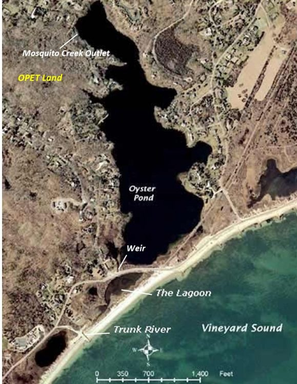Aerial view of Oyster Pond system