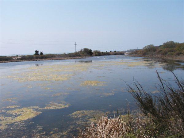 Lagoon May 13 2004