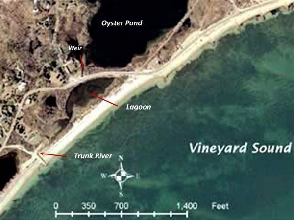 Oyster Pond system