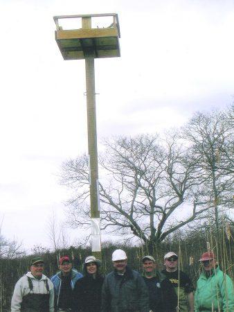 Osprey platform Team