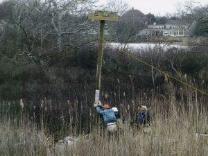 Raising the osprey platform