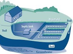 standard septic schematic