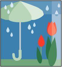 umbrella, rain and flowers